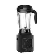 vitamix rival best